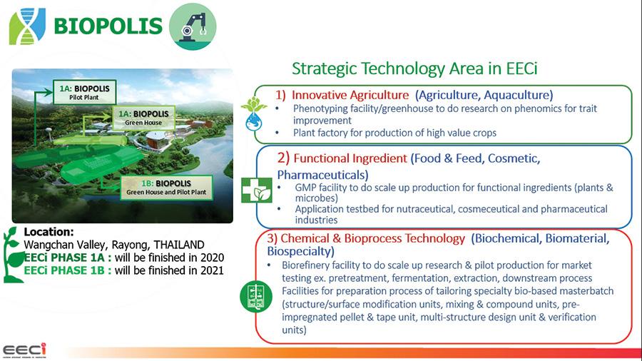 กลุ่มเทคโนโลยีที่มุ่งเน้นใน BIOPOLIS